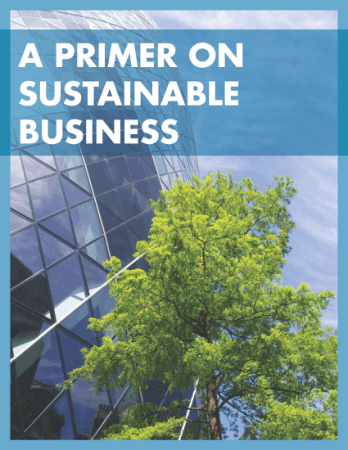A Primer on Sustainable Business Book, Download Free Templates