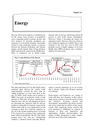 Economic Suvey of Pakistan 2014-2015 Chapter 14 Energy Book, Download Free Templates