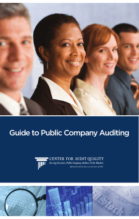 Guide to Public Company Auditing Book, Download Free Templates
