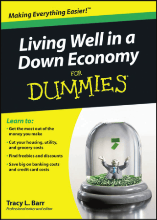 Living Well in a Down Economy for Dummies Book, Download Free Templates