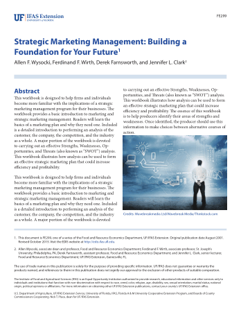 Strategic Marketing Management Building Foundation for Your Future Book, Download Free Templates